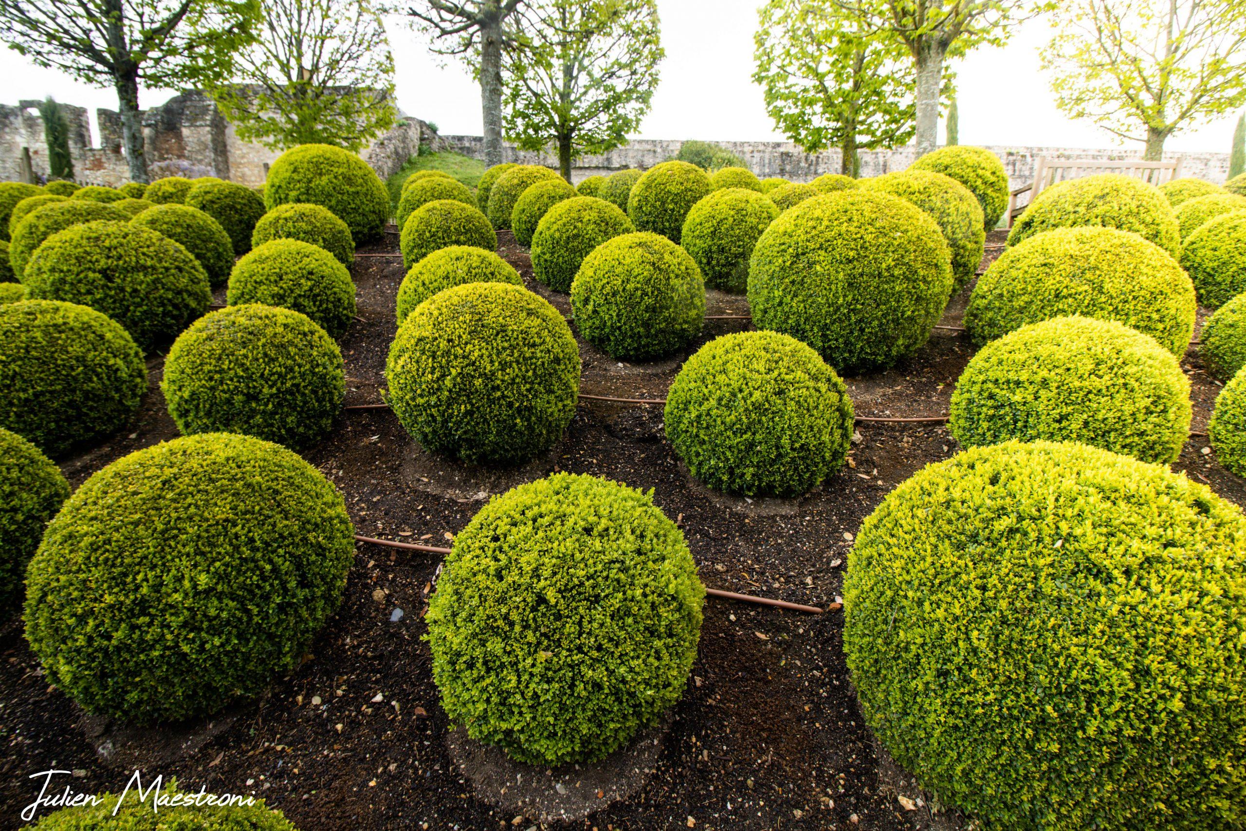Jardins d'Amboise